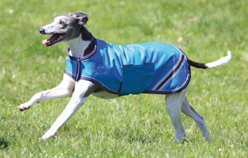 Inhumanidad abrigo para perros es resistente al agua - azul azul azul cobalto Talla:large: Amazon.es: Productos para mascotas