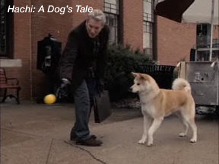 red dog film techniques