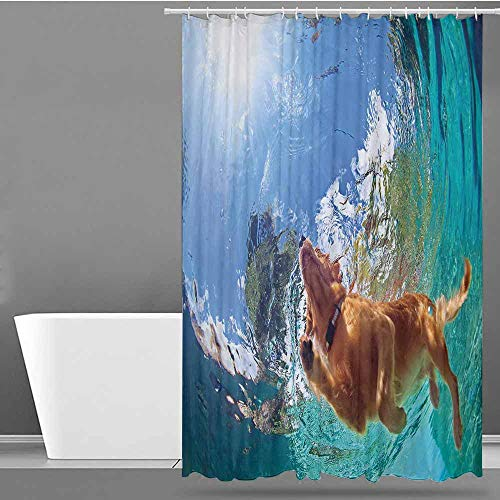 VIVIDX Large Shower Curtain,Funny,Underwater Photo of Golden Labrador Retriever Puppy Swimming in Pool Happy,Polyester Fabric Waterproof,W36x72L Cinnamon Turquoise ()