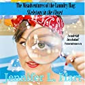 Skeletons in the Closet: The Misadventures of the Laundry Hag, Book 1 Audiobook by Jennifer L. Hart Narrated by Suzanne Cerreta