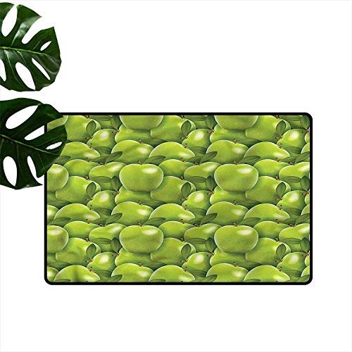 HOMEDD Indoor Doormat,Apple Granny Smith Harvest,for Outdoor and Indoor,31