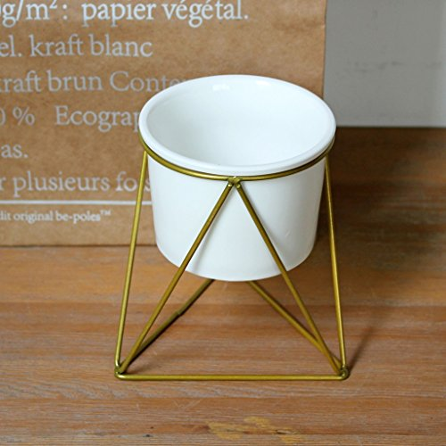 (BJLWT Geometric Irregular Wrought Iron Metal Flower Stand White Ceramic Flower Pot Green Plant Desktop Bonsai Decoration (Color : Gold))