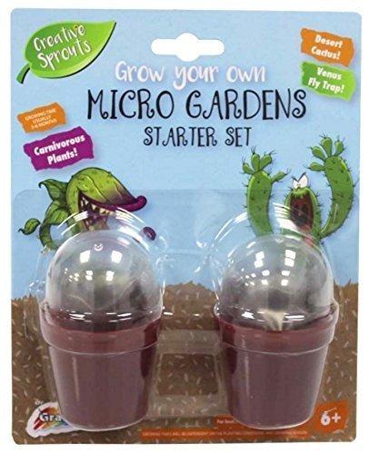 Bauen Sie Ihr eigenes an Fleischfressende Pflanzen Venus Fliegenfalle & Kaktus Kinder Mikro Garten Set ontdekken