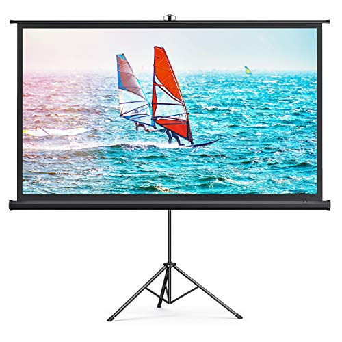 TaoTronics Projector Screen with