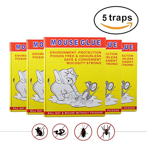 WINCAN 5 Pcs Butter Scented Humane Mouse and Insect Glue Boards Rat Trap Mice Pest Snake Sticky Traps Bulk with Professional Strength Glue for Indoor or Outdoor