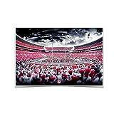 Alabama Crimson Tide ''Bryant-Denny Monochrome'' Wall Art
