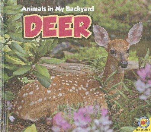 Deer (Animals in My Backyard) ebook