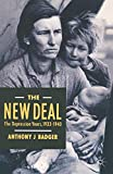 The New Deal: Depression Years, 1933-40 (American History in Depth)