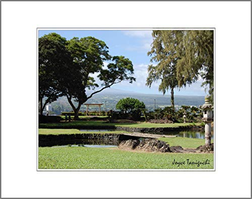 8x10 Photo Print with White Matting, Signed (fits 11x14 Picture Frame) - Tropical Hawaii Series Hilo Bay Background Japanese Garden Liliuokalani Park Hilo, Hawaii