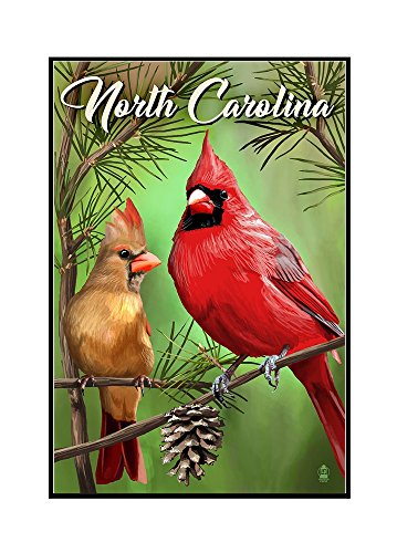 North Carolina - Cardinals - Summer (16x24 Framed Gallery Wrapped Stretched Canvas) by Lantern Press