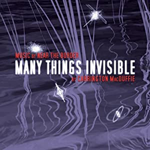 Many Things Invisible Audiobook