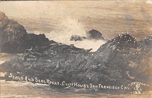 San Francisco California seals seal rocks Cliff House real photo pc ()