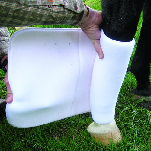 Cashel No Bow Bandage Cotton and Foam Wrapping Aid for Horses (16
