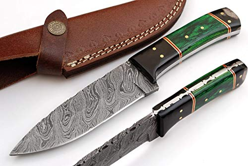 SharpWorld 9 Inches Beautiful Damascus Knife Made Of Remarkable Damascus Steel Horn/Wood Handle -Best Hunting Knife With Brown Sheath TJ109