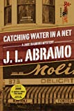 Front cover for the book Catching Water in a Net by J. L. Abramo