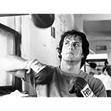 Rocky Stretched Canvas Print - Win Rocky Win (32 x 24 inches)