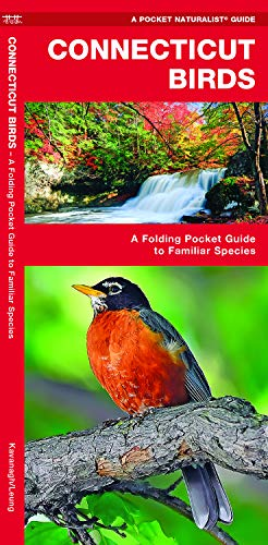 Connecticut Birds: A Folding Pocket Guide to Familiar Species (A Pocket Naturalist Guide) (Pocket Star Ri)
