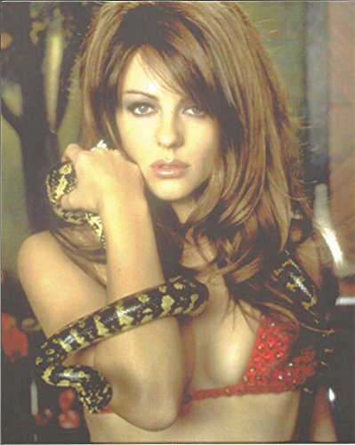 Bedazzled Elizabeth Hurley in bikini with snake - 8 x 10 Photo 004
