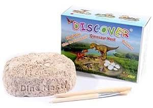 Dinosaurio kit de excavación que lleva a sus crías