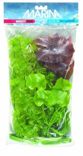 Marine Dwarf (Marina Aquascaper Variety Pack including Hornwort, Dwarf Lily, Corkscrew Vallisneria, Banana Plant, Hairgrass)
