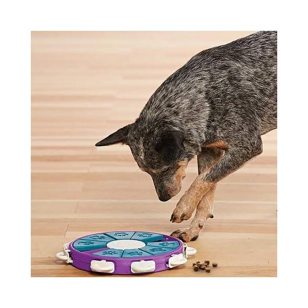 Nina Ottosson Dog Twister Activity Toy 4