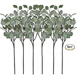 Artificial Greenery Stems 6 Pcs Straight Silver Dollar Eucalyptus Leaf Silk Greenery Bushes Plastic Plants Floral Greenery Stems for Home Party Wedding Decoration