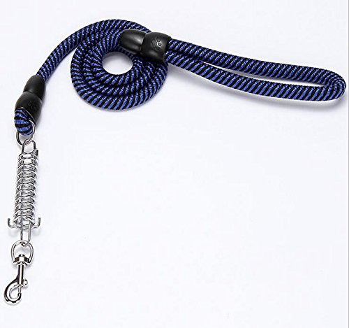 Amazon Dog Lead Shock Absorber Large Dogs
