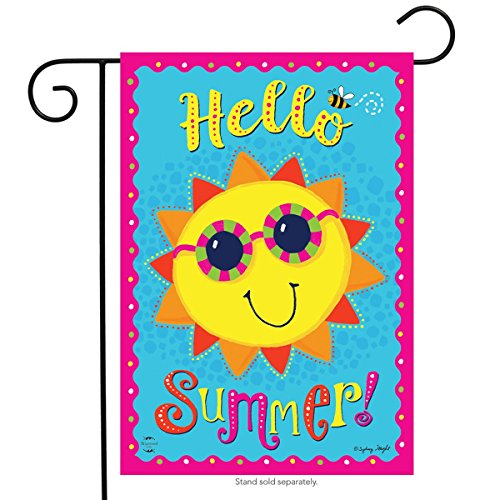 Briarwood Lane Hello Summer Sun Garden Flag Sunshine Sunglasses 12.5