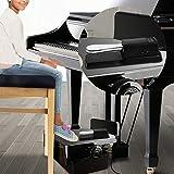MIMIDI Sustain Pedal,Universal Piano Foot Damper