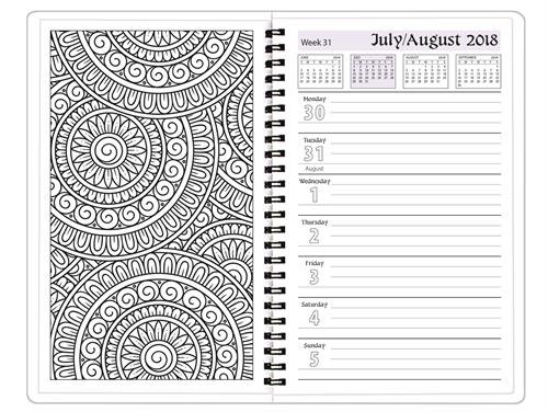 2018-2019 Academic Weekly Color My Planner