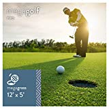 MEGAGRASS MegaGolf Pro 12 x 5 Ft Artificial Grass for Golf Putts Sports Outdoor Indoor Green Faux Synthetic Fake Grass Decor Mat Rug Carpet Turf 60 SqFt 0.63'' Tall Blades 44 oz Face Weight