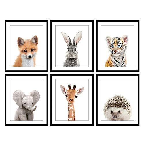 Bestbuddy Pet Set of 6 (8X10) Unframed Woodland Animals Fox Bunny Tiger Elephant Giraffe Hedgehog Nursery Art Prints Set Kids Baby Room Wall Decor BBPAP002