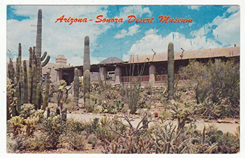 - Sonora Desert Museum, Arizona Vintage Original Postcard #1880 - May 25, 1961
