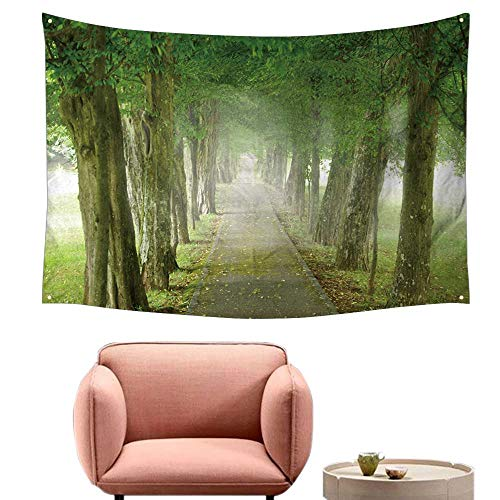 (alsohome Tapestry for Bedroom Cool Wall Tapestry Footpath Through The Misty Promenade 84