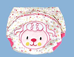 12Pcs Baby Boys Girls Toddler Toilet Pee Potty Training Pants Cartton Underwear Size L