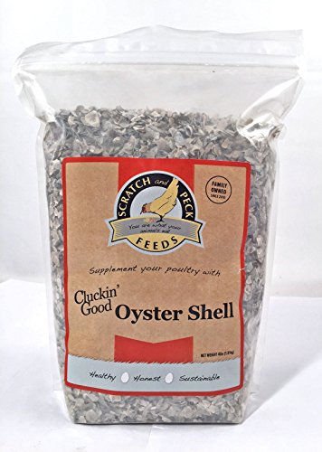 oyster shell for chickens - 2