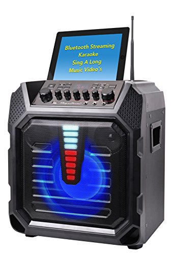 Spectrum AIL 899 Extreme Party Mixer with 2 Guitar Inputs, Separate Volume, Bass, Treble, Digital Distortion & Digital Reverb, Black - Watt Bass Guitar Amp