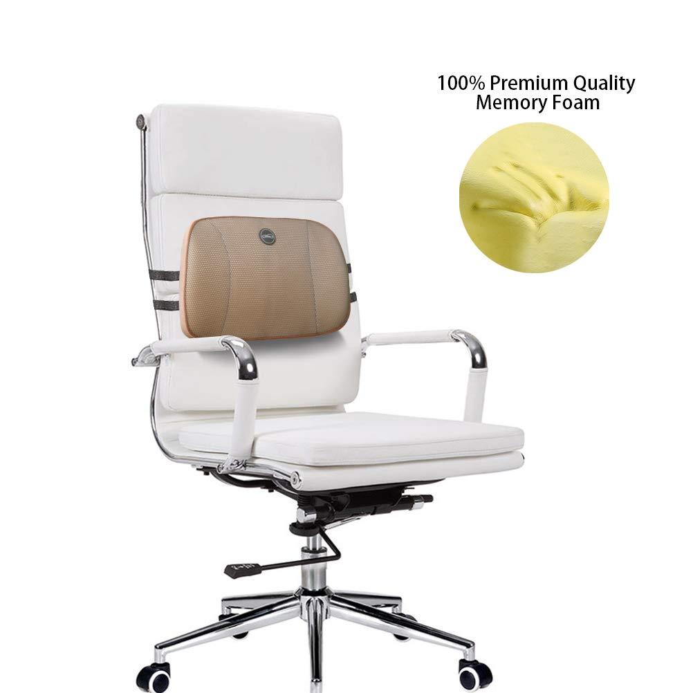 Amazon.com: NINTE Memory Foam Lumar Support Back Cushion ...
