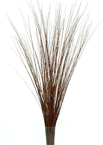 GreenFloralCrafts 4-5 ft Tall 3-Tone Light Mahogany Brown Asian Willow, Bunch of 90-100 stems & Botanical Accent (Vase Not (Stick Vase)