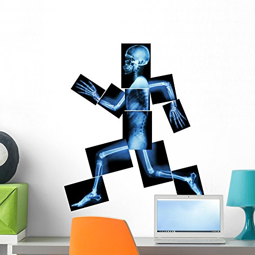 Wallmonkeys FOT-73109228-24 WM2461 Aerobic Exercise (Human Bone is Running) Peel and Stick Wall Decals H x 24 in W, 24