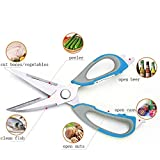 Kitchen Shears 8 in 1 - MISUNDER 2017 Stainless Steel Cooking Scissors Multifunctional Utensil for Meat, BBQ, Nuts, Fish, with a Magnetic Holder, Blue(BJ-060)