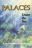 Palaces Under the Sea: A Guide to Understanding the Coral Reef Environment