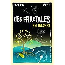 Les fractales en images (Aperçu)