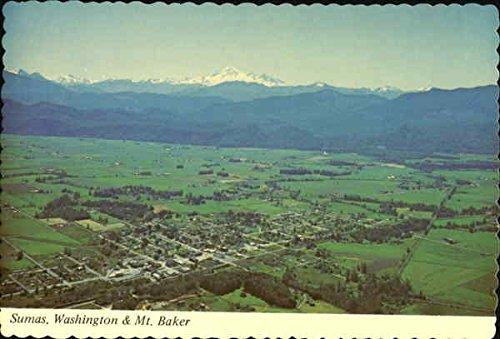 sumas-washington-mt-baker-sumas-original-vintage-postcard