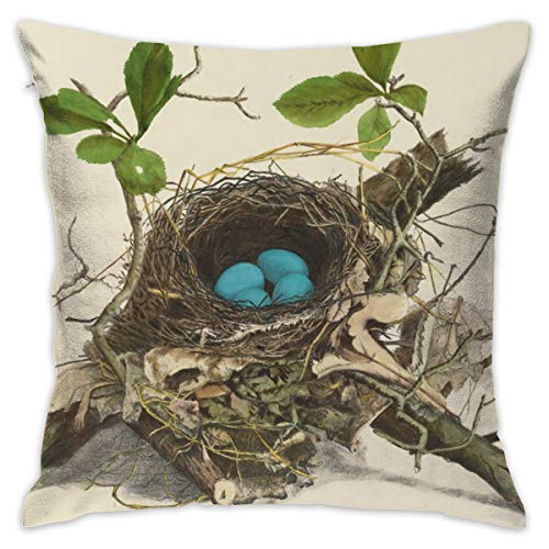 Fancy Forest Home Robin Birds Nest Egg Spring Throw Pillow Covers for Couch Bed Sofa, Personalized Pillow Cases Decorative Pillowcase Covers with Zipper 18 X 18 Inch ()