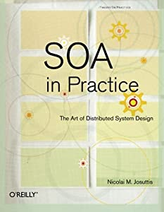 SOA in Practice: The Art of Distributed System Design (Theory in Practice)