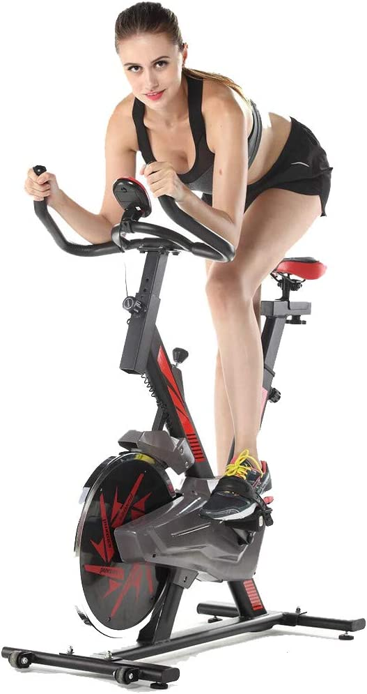 Joopee Exercise Bike Home Gym Equipment