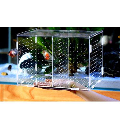 Homyl Aquarium Pet Fish Tank Guppy Breeding Breeder Rearing Box Hatchery #1 by Homyl (Image #8)