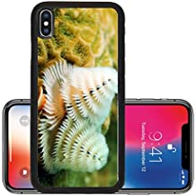 Liili Premium Apple iPhone X Aluminum Backplate Bumper Snap Case Soft coral marine life in tropical location IMAGE ID 13984971