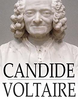 candide a french satire by voltaire Elaborate upon what advantages there might be for voltaire in writing candide as a satire (albeit a philosophical one), as opposed to an out-and.